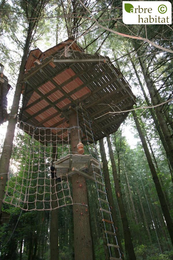 cabane merle dite de tarzan arbre habitat. Black Bedroom Furniture Sets. Home Design Ideas